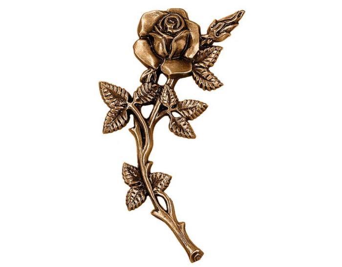 Róża 2650