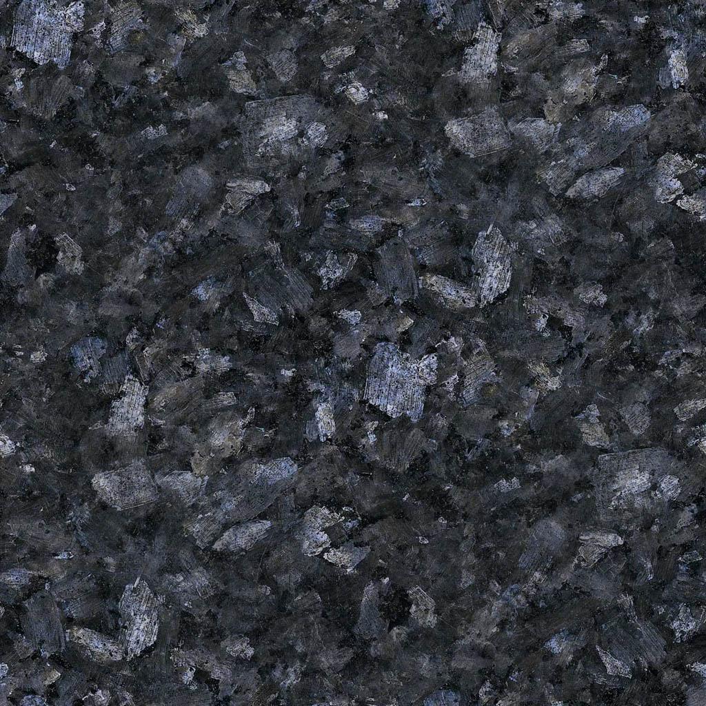 Labrador Niebieski