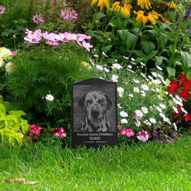Cmentarze dla zwierząt