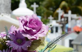 Jakie kwiaty do wazonu na cmentarz ?